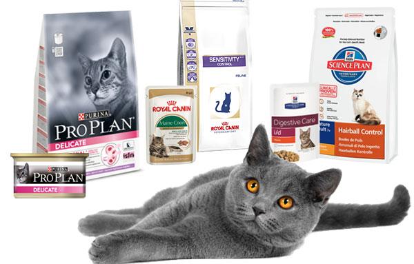 Туалеты и наполнители для котов — купить в интернет