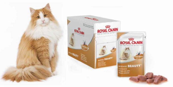 Корм royal canin intense beauty gravy